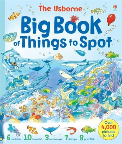 Usborne Big Book of Things to Spot (Young searches)