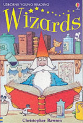 9780746053102: Wizards (Usborne young readers)