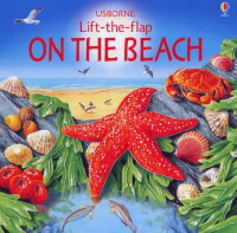9780746061848: On the Beach (Lift the Flap Learners)