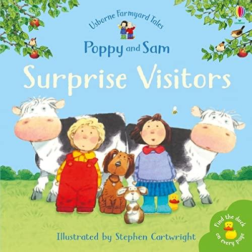 9780746063231: Surprise Visitors (Farmyard Tales Minibook Series)