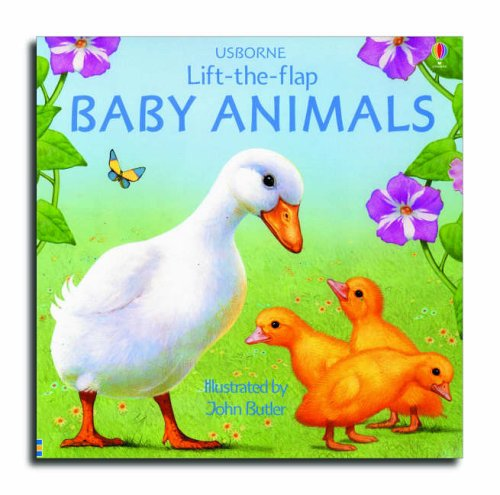 9780746064290: Baby Animals (Lift-the-flap)