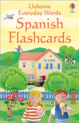 9780746066553: Everyday Words In Spanish Flashcards (Everyday Words Flashcards)