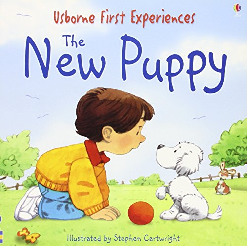 9780746066621: The New Puppy (Usborne First Experiences)