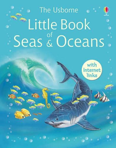 9780746067291: The Usborne Little Encyclopedia of Seas & Oceans (Usborne Little Encyclopedias)