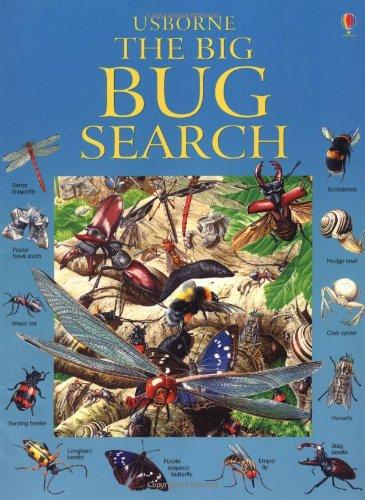 9780746067727: The Big Bug Search