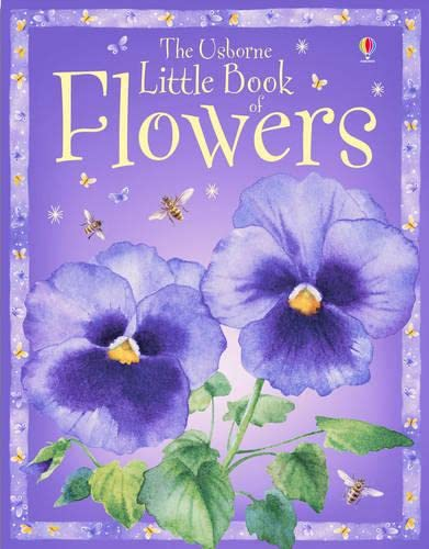 9780746069295: The Usborne Little Book of Flowers