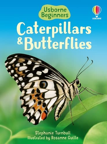 9780746074473: Caterpillars and Butterflies (Beginners)