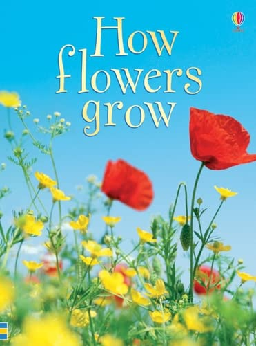 9780746074503: How Flowers Grow