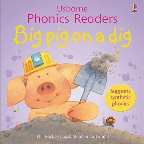 9780746077184: Big Pig on a Dig (Usborne Phonics Readers)