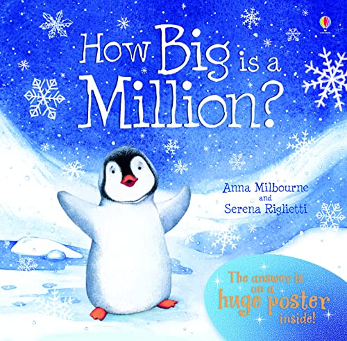 9780746077696: How Big is a Million? (Picture Poster Books)