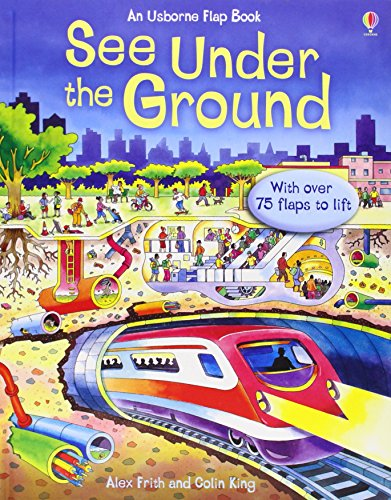 9780746077702: See Inside: See Under the Ground: With over 75 flaps to lift (Usborne See Inside)