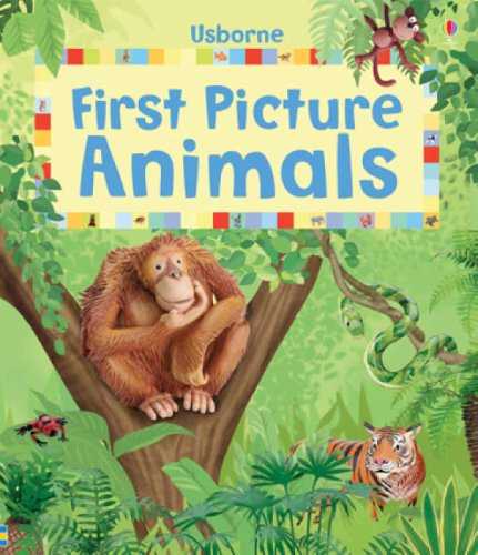 First Picture Animals (First Picture Books): Felicity Brooks