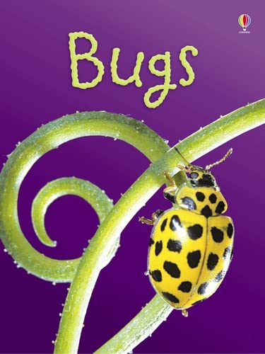 9780746080375: BUGS: LEVEL 1 ( USBORNE BEGINNERS ) by Bowman, Lucy ( Author ) on Jun-01-2007[ Hardcover ]