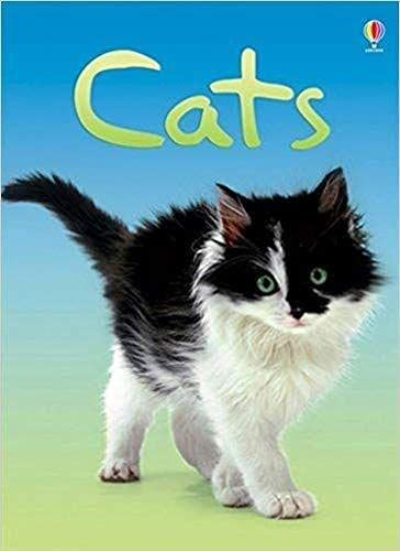 9780746080474: Cats (Beginners)