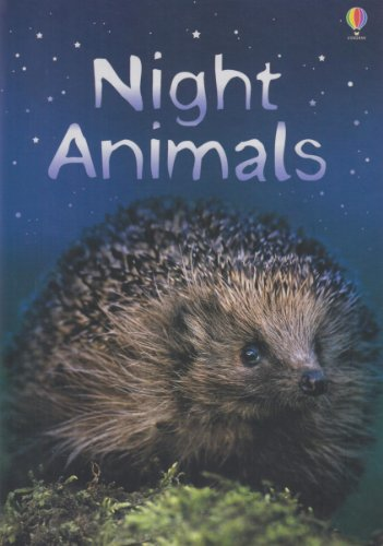 9780746080504: Night Animals (Usborne Beginners) (Usborne Beginners)
