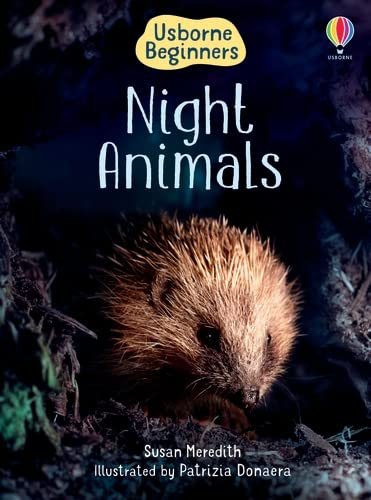 9780746080504: Night Animals (Usborne Beginners) (Usborne Beginners)