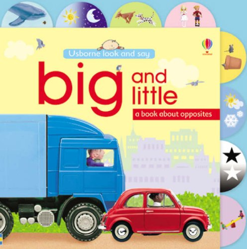 9780746084168: Big and Little (Usborne Look and Say)