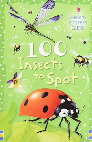 9780746089798: 100 Insects to Spot (Usborne Spotter's Cards)