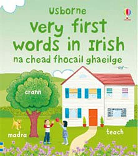 9780746091111: Very First Words in Irish (Usborne First Words Board Books)