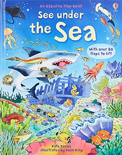 9780746096383: See Inside: See under the Sea: An Usborne Flap Book. With over 80 flaps to lift
