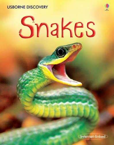 9780746096406: Snakes (Discovery)