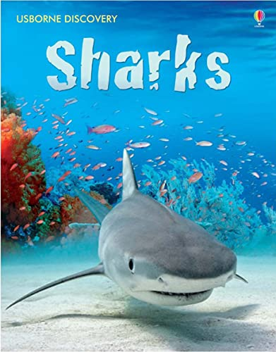 9780746096413: Sharks (Usborne Discovery)