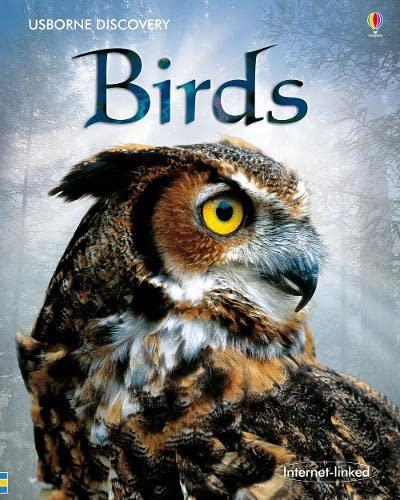 9780746096444: Birds (Discovery)