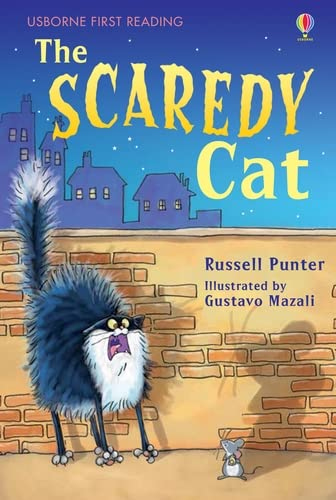 9780746096727: The Scaredy Cat (Usborne First Reading)