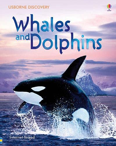 9780746098219: Whales and Dolphins (Usborne Discovery)