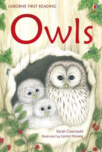 Owls: Courtauld, Sarah