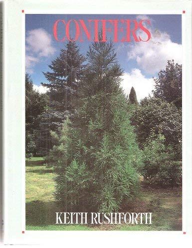 9780747028017: Conifers