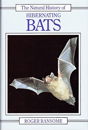 9780747028024: The Natural History of Hibernating Bats (Christopher Helm mammal series)