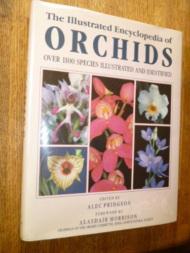 9780747206354: Illustrated Encyclopedia of Orchids