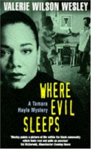9780747254195: Where Evil Sleeps (A Tamara Hayle mystery)