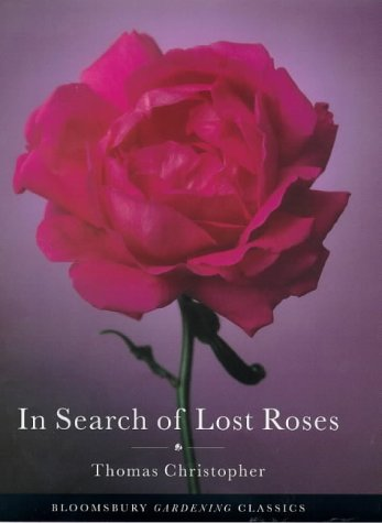 9780747530091: In Search of Lost Roses