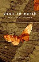 9780747536970: Down to Earth (Bloomsbury Gardening Classics)