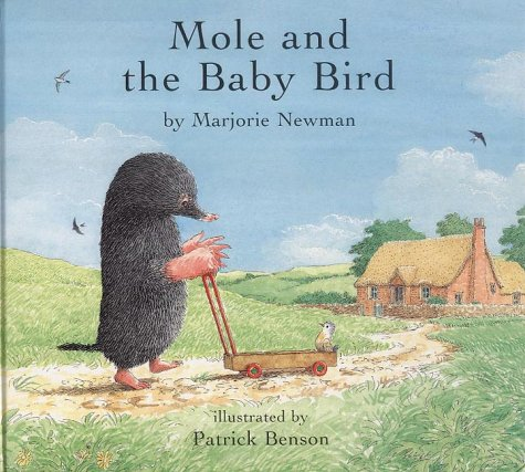 9780747558835: Mole and the Baby Bird