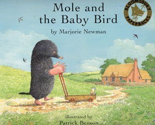 9780747561194: Mole and the Baby Bird