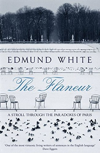 9780747596875: The Flaneur: A Stroll Through the Paradoxes of Paris