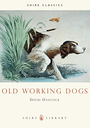 9780747803768: Old Working Dogs (Shire Library)