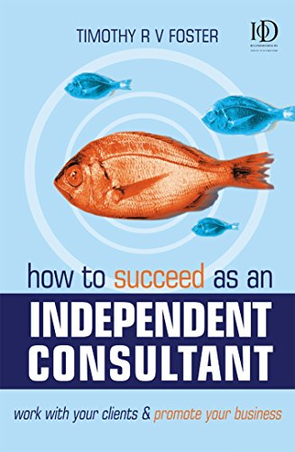 How to Succeed as an Independent Consultant: Work with Your Clients & Promote Your Business: ...