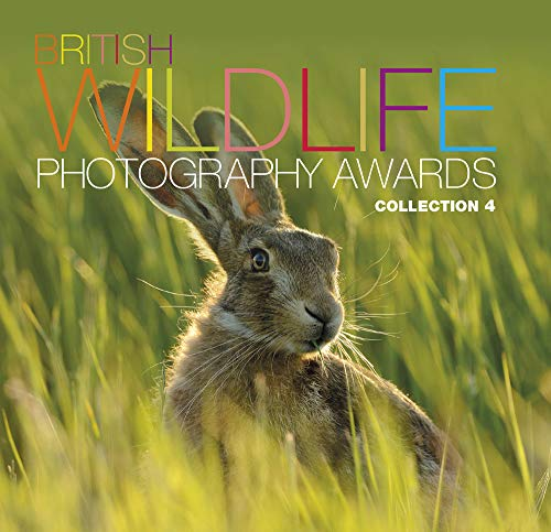 9780749574796: British Wildlife Photography Awards: Collection 4