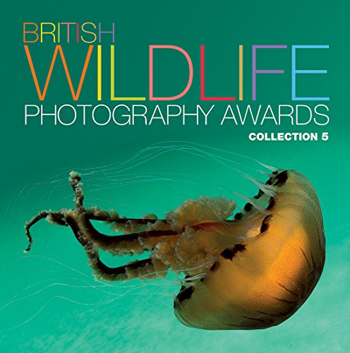 9780749576431: British Wildlife Photography Awards: Collection 5