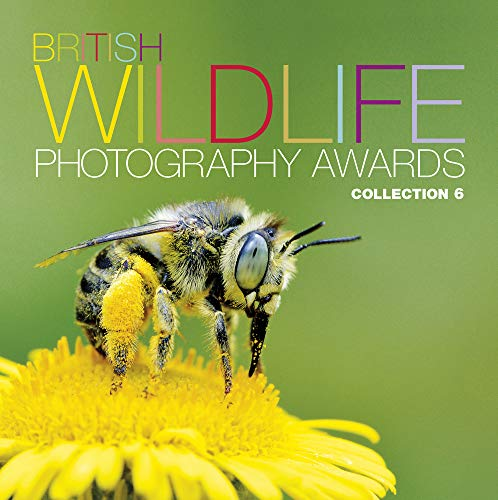9780749577254: British Wildlife Photography Awards: Collection 6