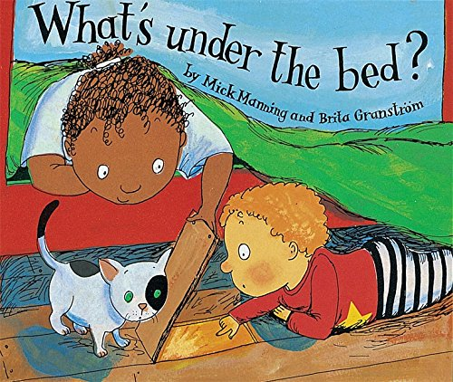9780749627546: What's Under the Bed (Wonderwise)
