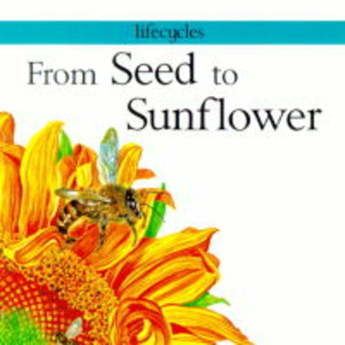 9780749631420: From Seed to Sunflower (Lifecycles)