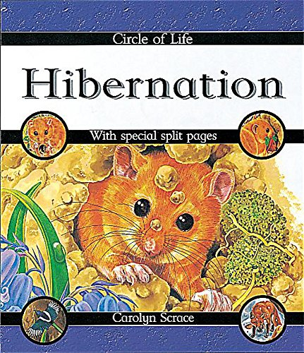 9780749642303: Hibernation (Circle of Life)