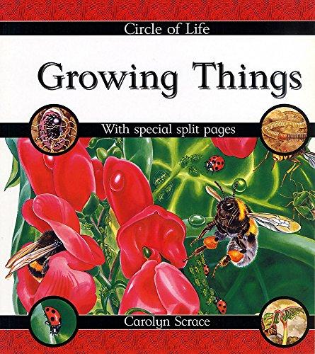 9780749642334: Growing Things (Circle of Life)