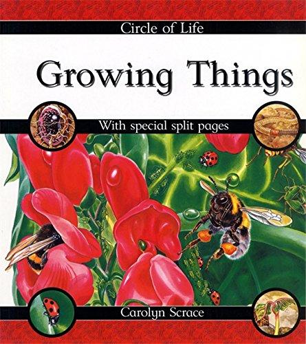 9780749644277: Circle of Life: Growing Things