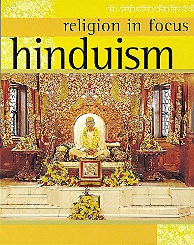 Hinduism (Religion in Focus): Teece, Geoff